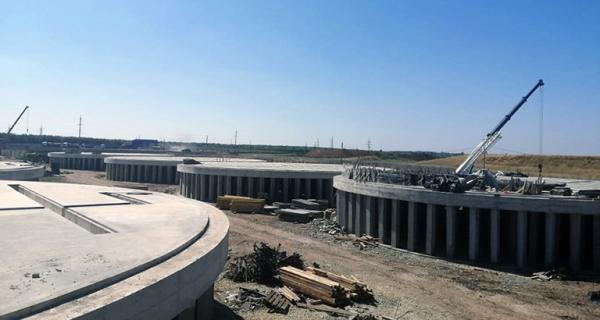 Сою и рапс переработают на заводе в Тербунах