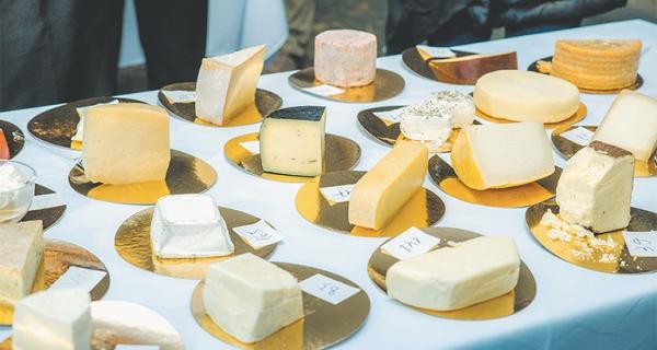 Сырный «оскар» липчанам