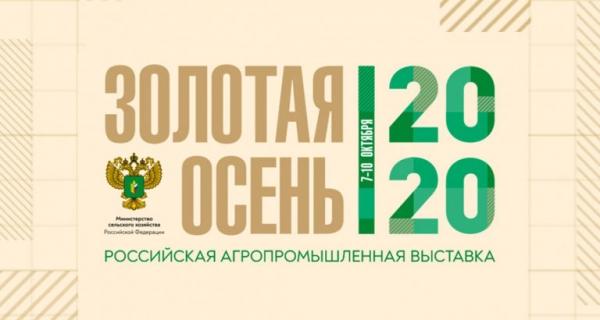 «Золотая осень-2020» в онлайн-формате