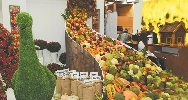 Агрохолдинги примут участие в развитии сел