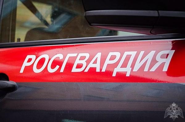В Липецкой области при поддержке ОМОН Росгвардии пресечена деятельность экстремистской организации